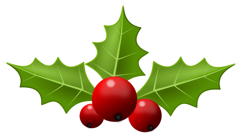 Holly leaf png. Clipart remix medium image