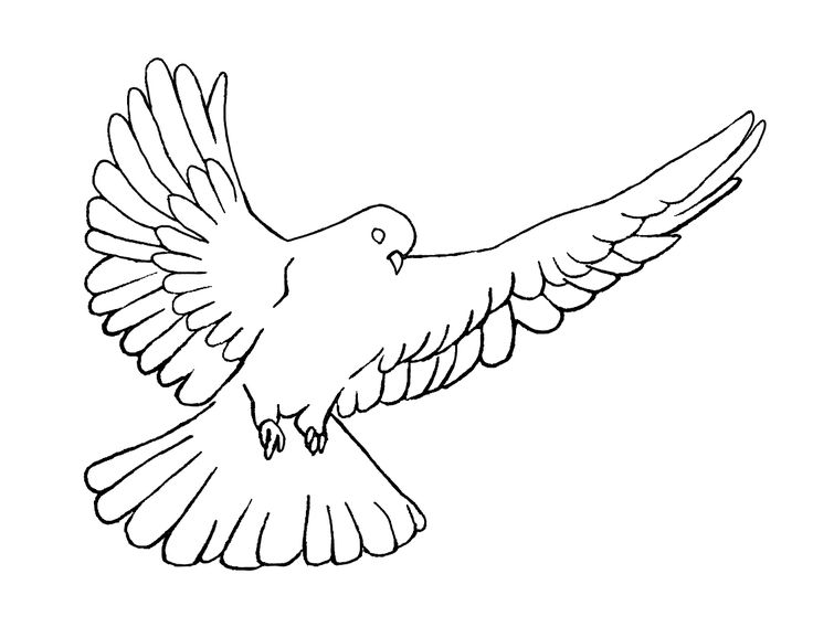 Tranquility pencil and in. Holy clipart holy spirit clipart free download
