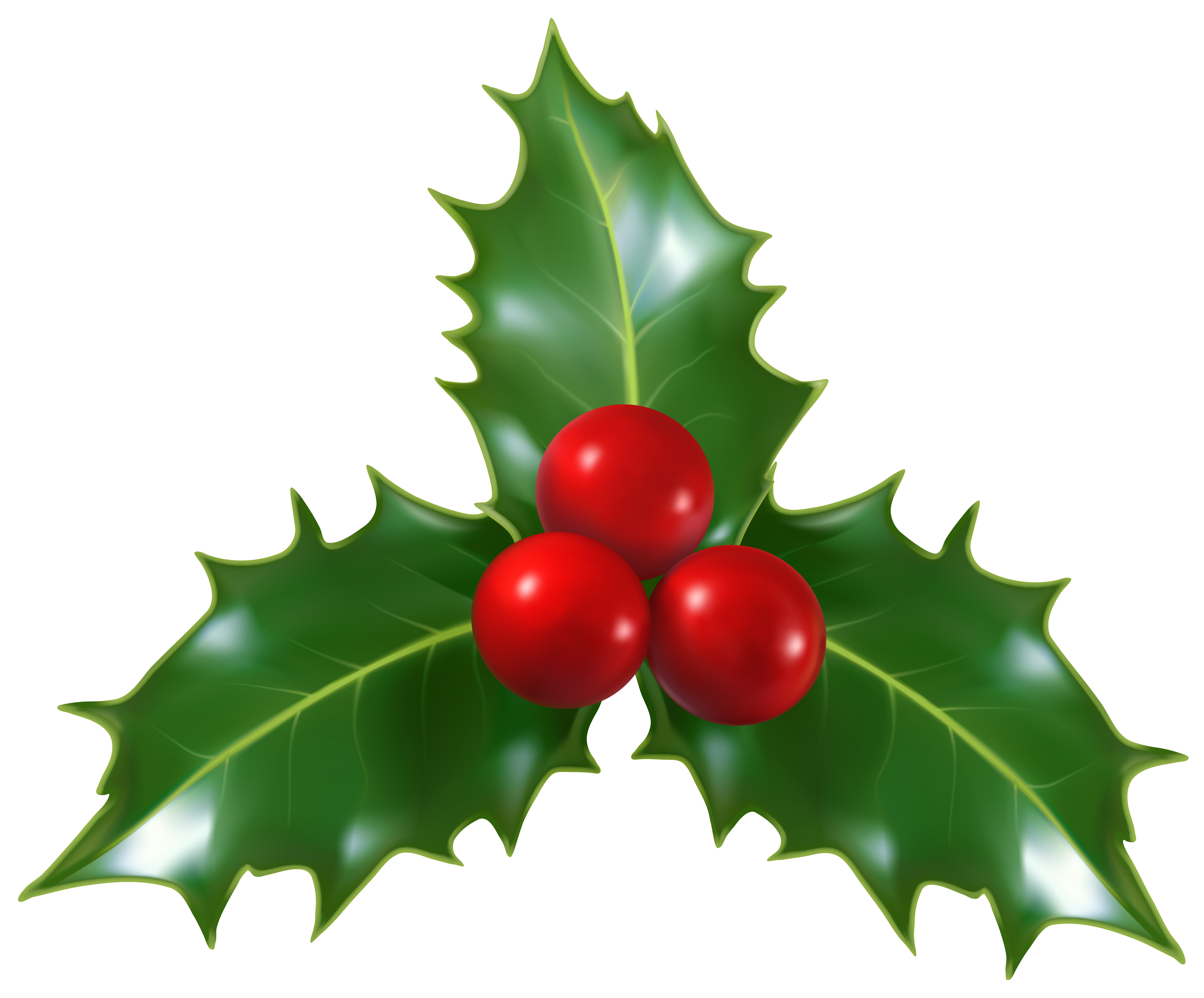 holly png