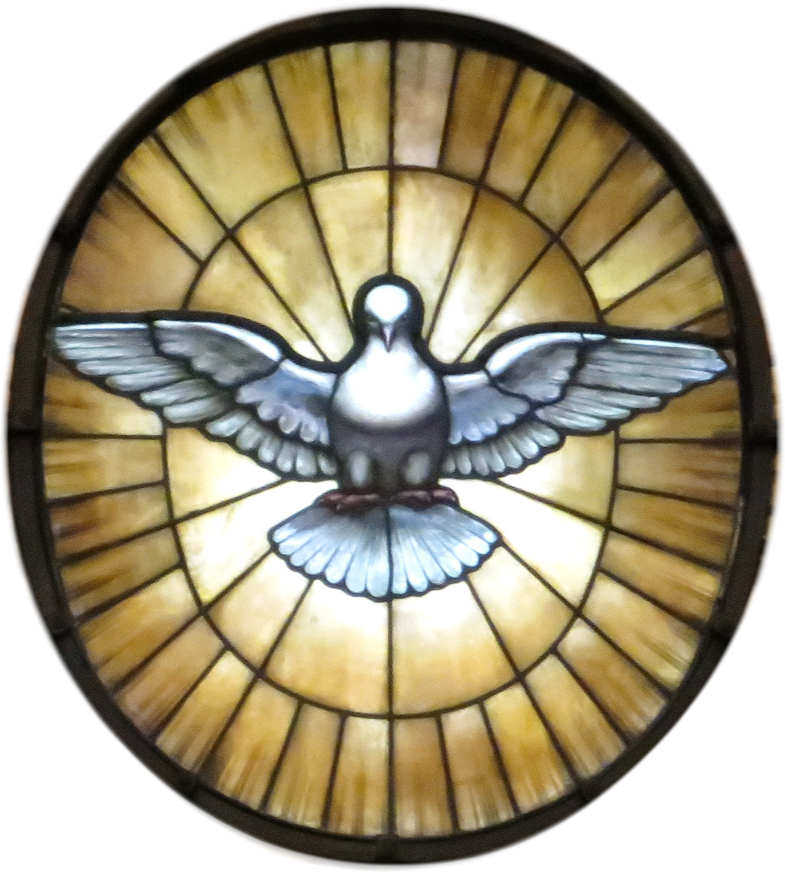 Holy spirit dove png. File of the wikimedia