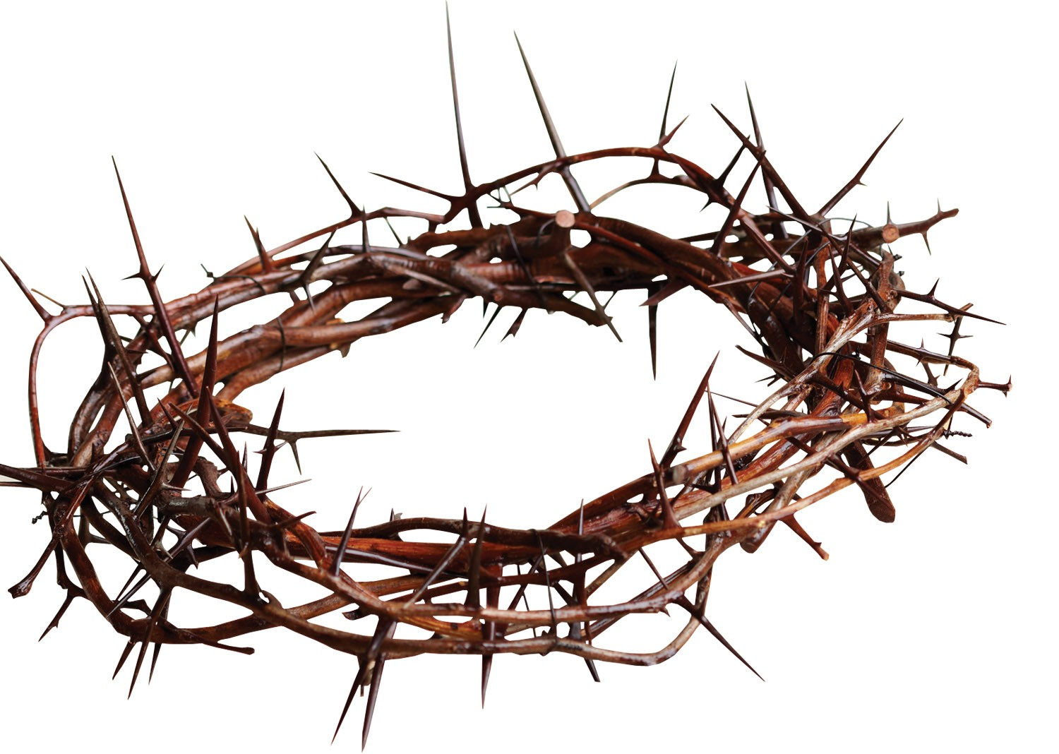 Of downward upward and. Holy week clipart crown thorns vector free library