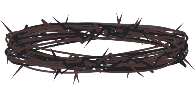 Free image on pixabay. Holy week clipart crown thorns vector free library