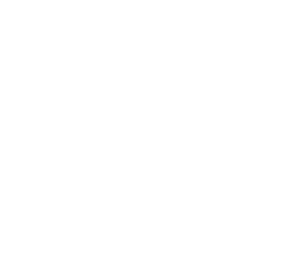 Home depot logo png. The blue coda launched
