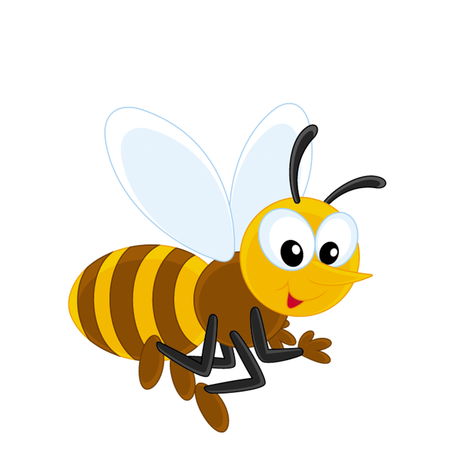 Honey bee cartoon png. Insect transprent free download