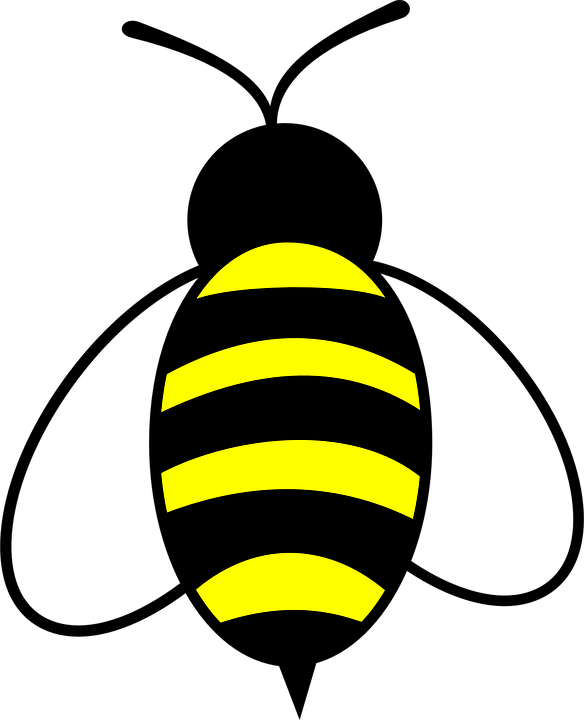 Honey bee clipart png. Free transparent images pluspng