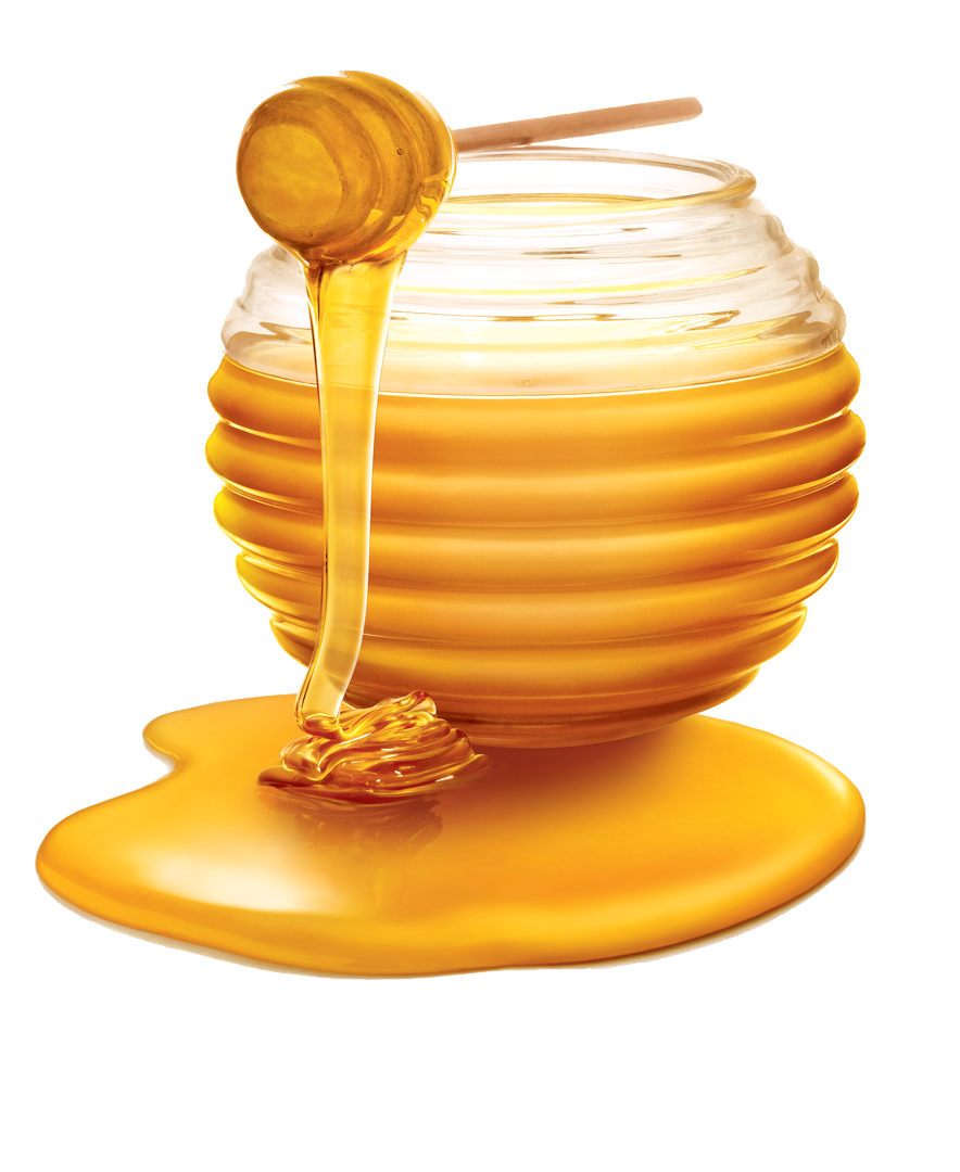 honey dripping png