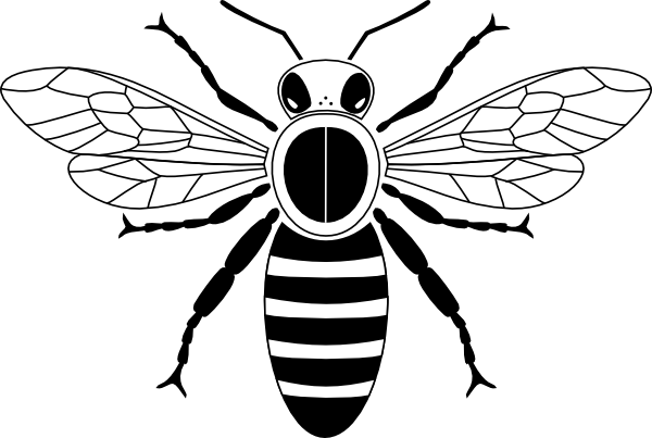 Honey clipart honey bee. Drawing clip art library