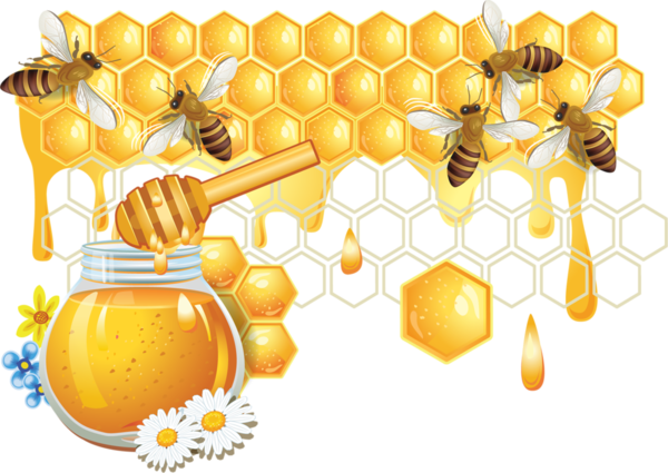 Honey clipart label. Pin by patty krause