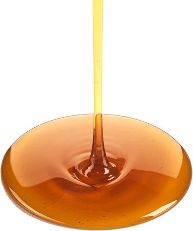 Honey drip png. Bg sobol honeydripbgnickt