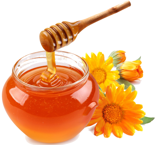 Free download. Honey png image svg freeuse stock