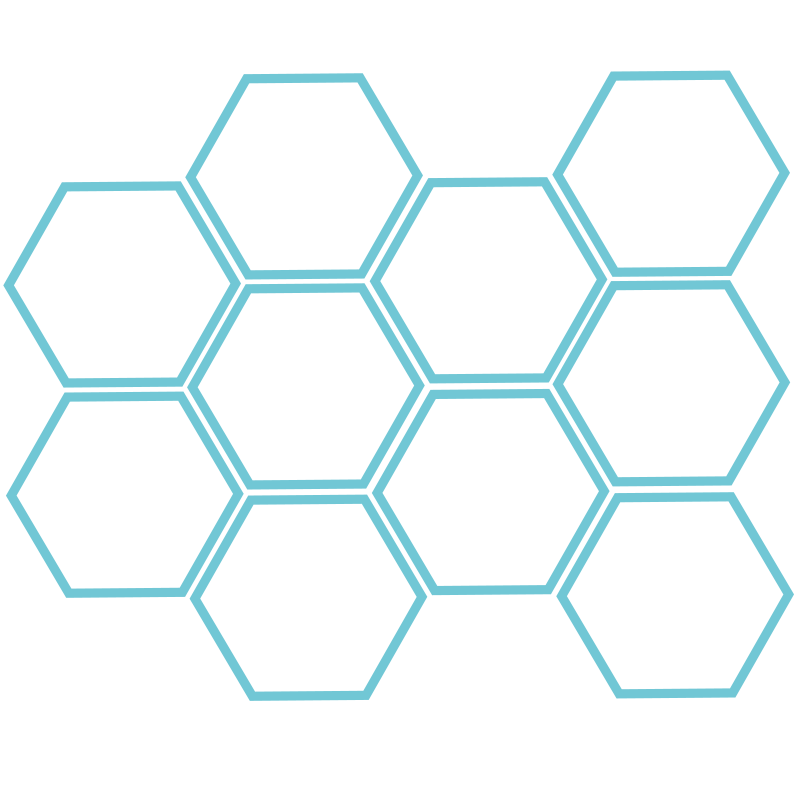 Hexagon png pattern. European dark bee honeycomb