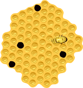 Honeycomb clipart beeswax. Honey bees or honeybees