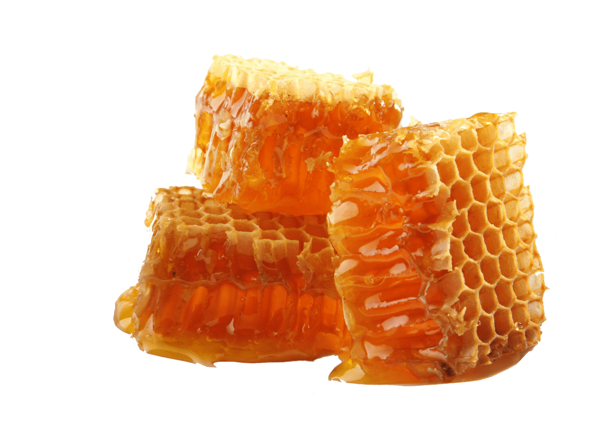 Blocks transparent stickpng. Honey png image svg freeuse