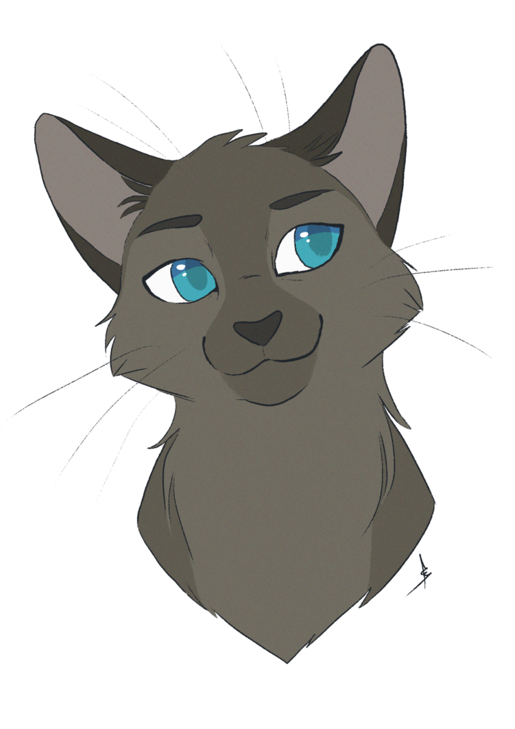 Ovary drawing cat. Commission jaggedstripe by owlcoat