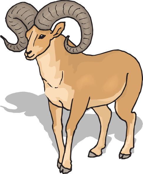 Png ram horns art. Free horn cliparts download