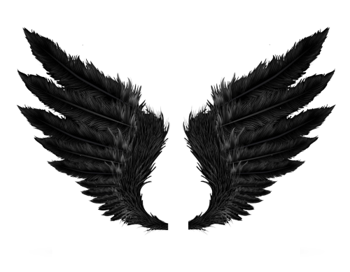 angel wings png tumblr