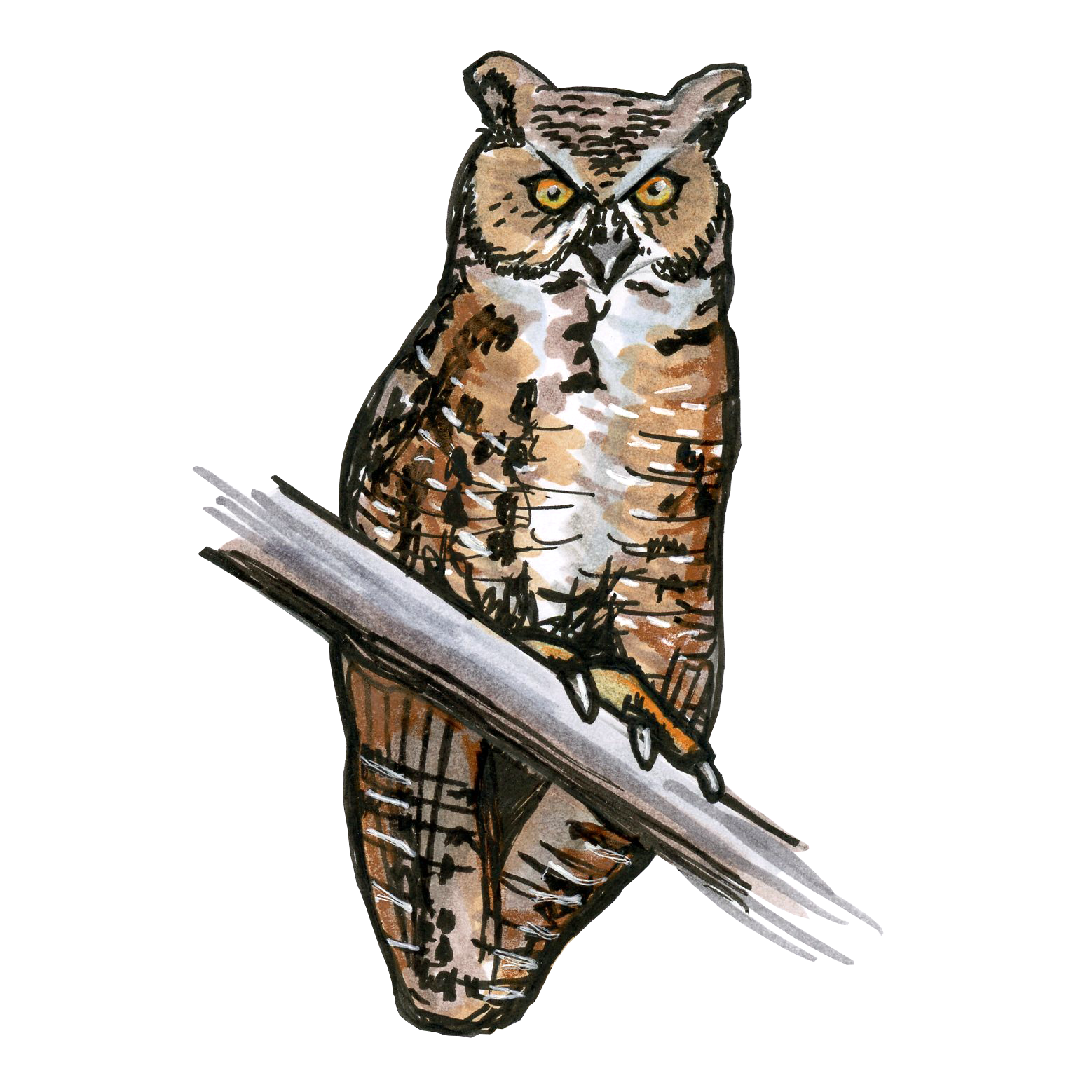 Horned owl png. Great bird scout
