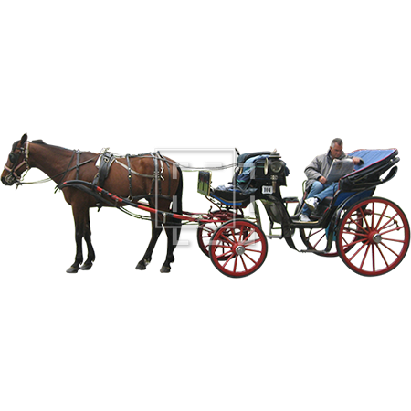 Horse and carriage png. Buggy transparent images pluspng