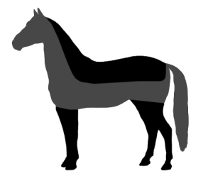 Horse clip. Most common types