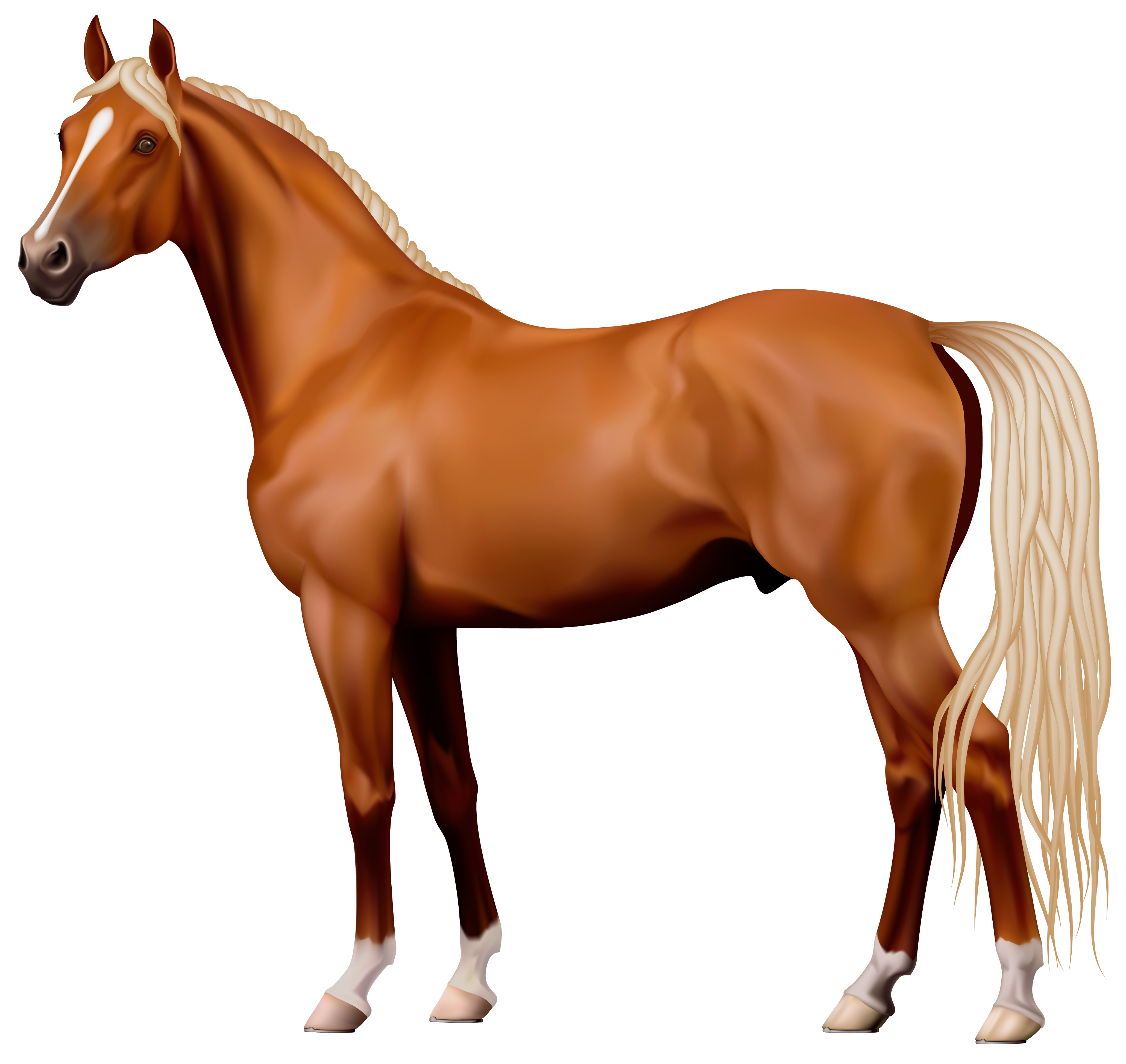 png horse