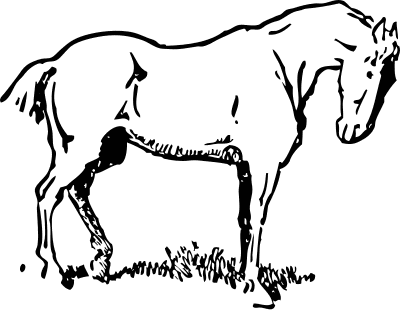 Horse clip art black and white. Free clipart pages of
