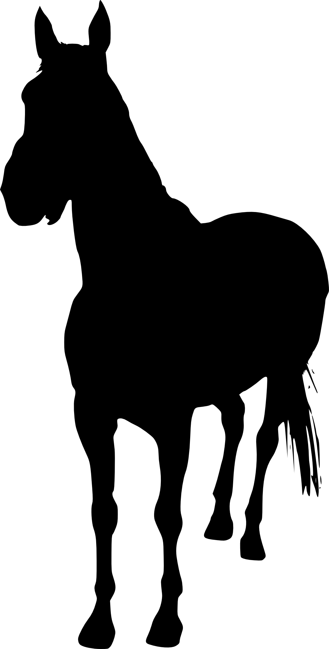 Horse clip art clear background. Silhouette png transparent