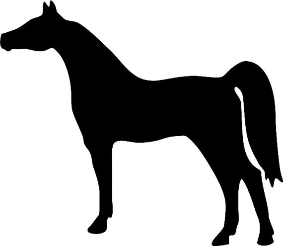 Horse clip art clear background. Arabian equine window decal