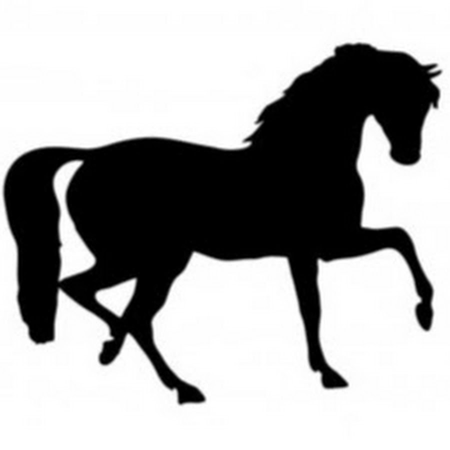 Horse clip art clear background. Bsn horses youtube