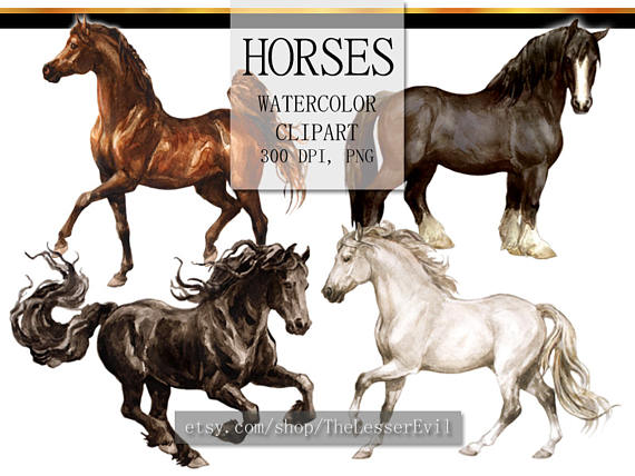Horse clip art realistic. Clipart digital watercolor illustration
