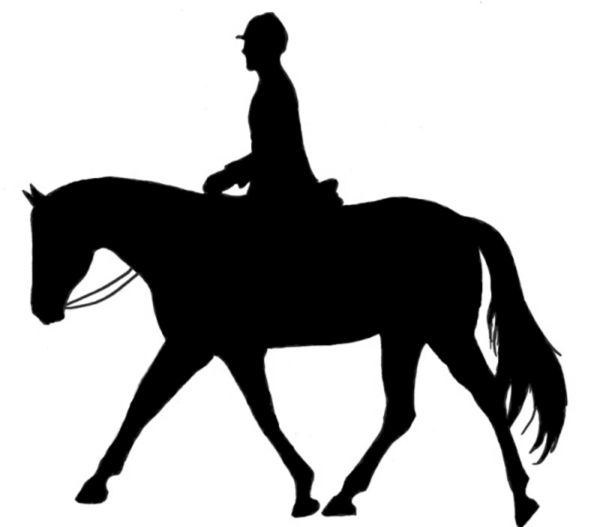 Riding clipart horseback riding. Horse silhouette images at