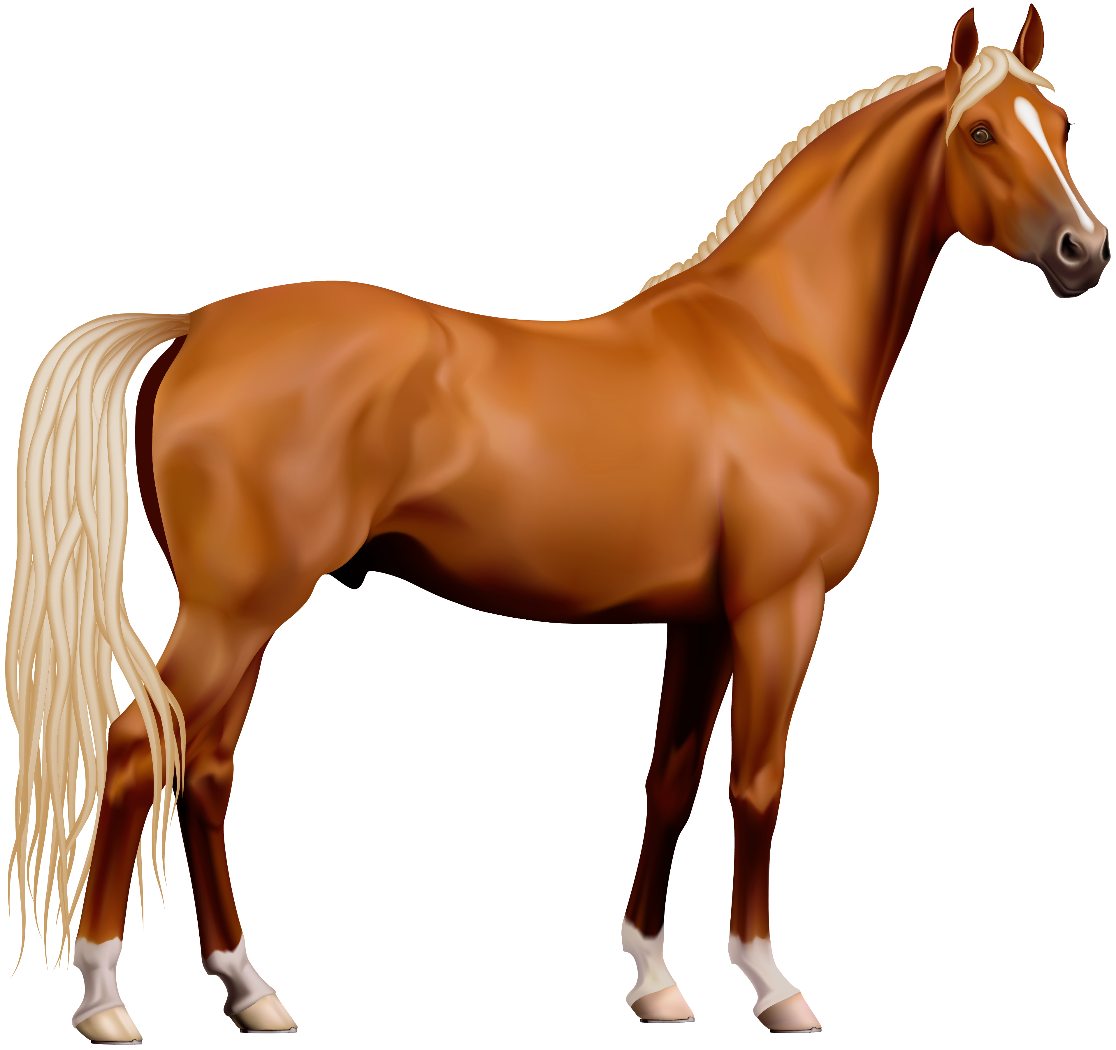 horse .png