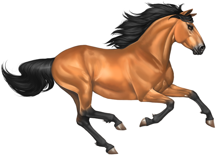 Horse clip art transparent background. Mustang png images free