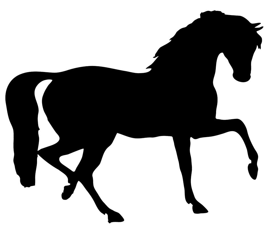 vector horses friesian