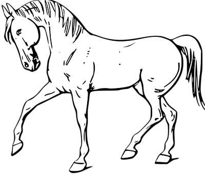 Horse clip black and white. Cute art free
