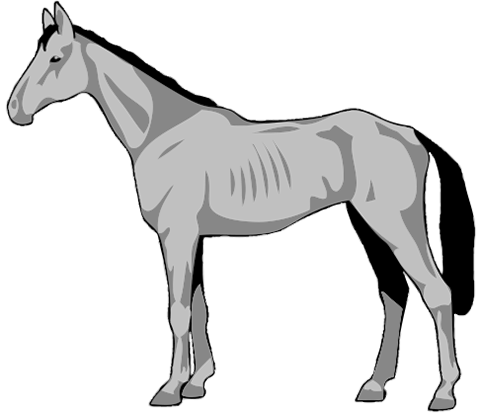 Horse clip belly. Weight management tools in