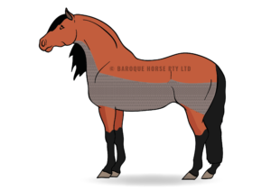 Horse clip trace. Clipping low diagram