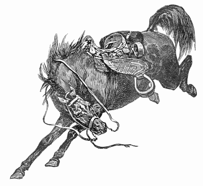 Horse clipart war horse. Free page of public