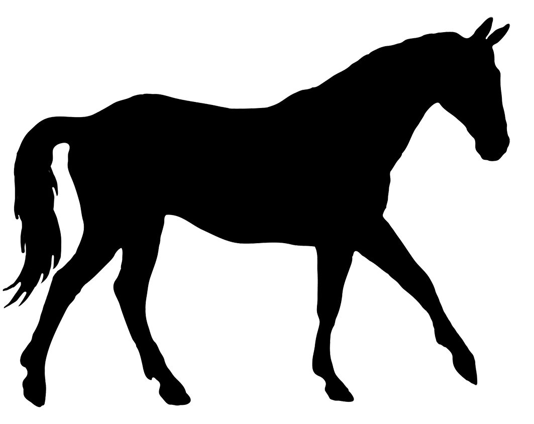Horse silhouette png. Related keywords suggestions