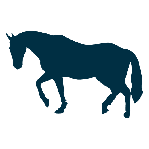 Horse png legs up. Walking silhouette transparent svg