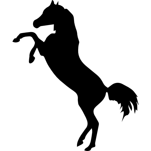 Horse png legs up. Standing on two back