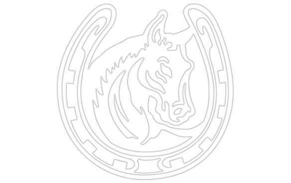 Horse shoe on horse png. Drawing at getdrawings com
