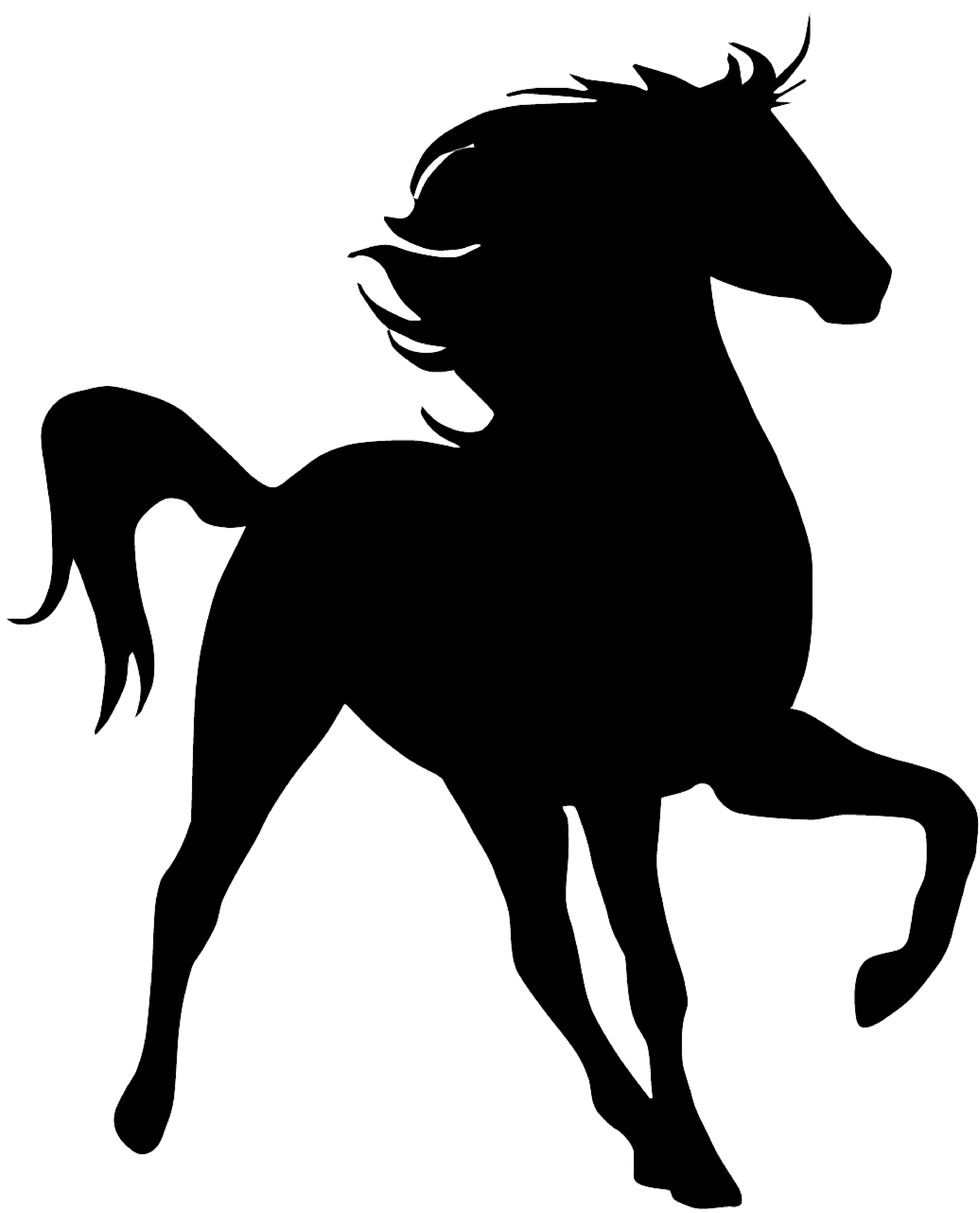 Horse silhouette png. Kohala youth ranchhome ranch