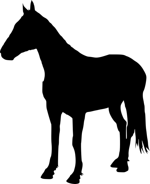 Horse silhouette png. Free images toppng transparent