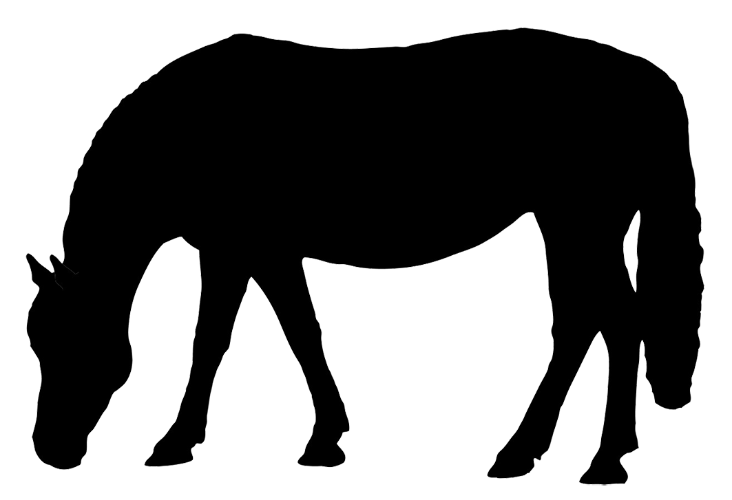 Silhouette black grazing. Horse clip art spring png royalty free library