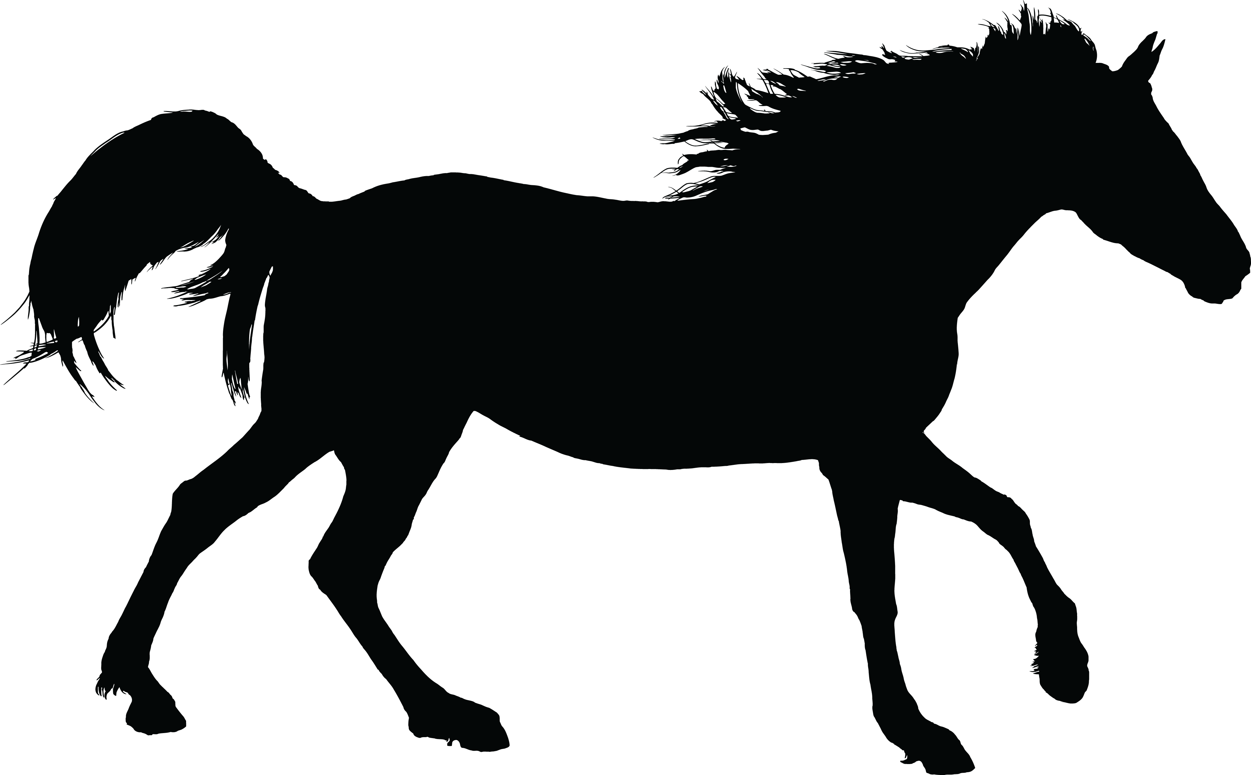 Horseshoe clipart silhouette. Cliparts for free