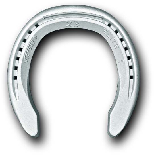 horseshoe transparent aluminum