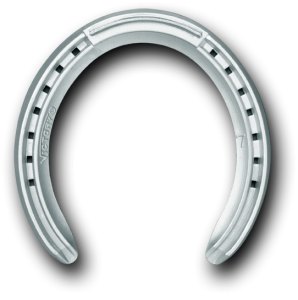 Horseshoe transparent racing. Victory plate outer rim