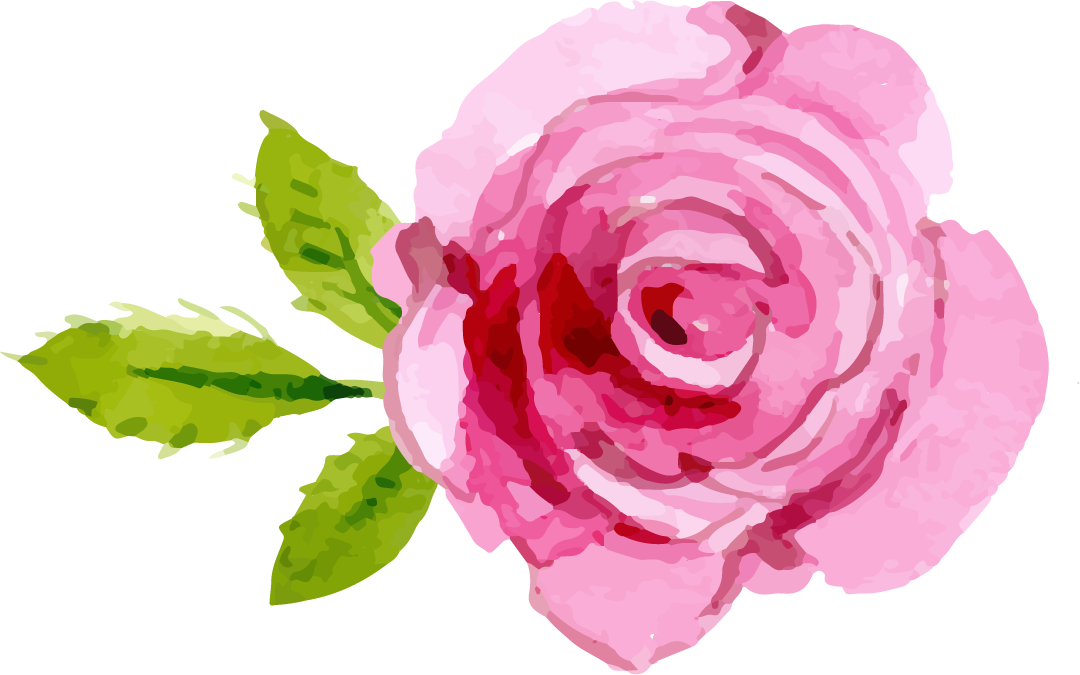 Hot pink flower png. Rose images a that