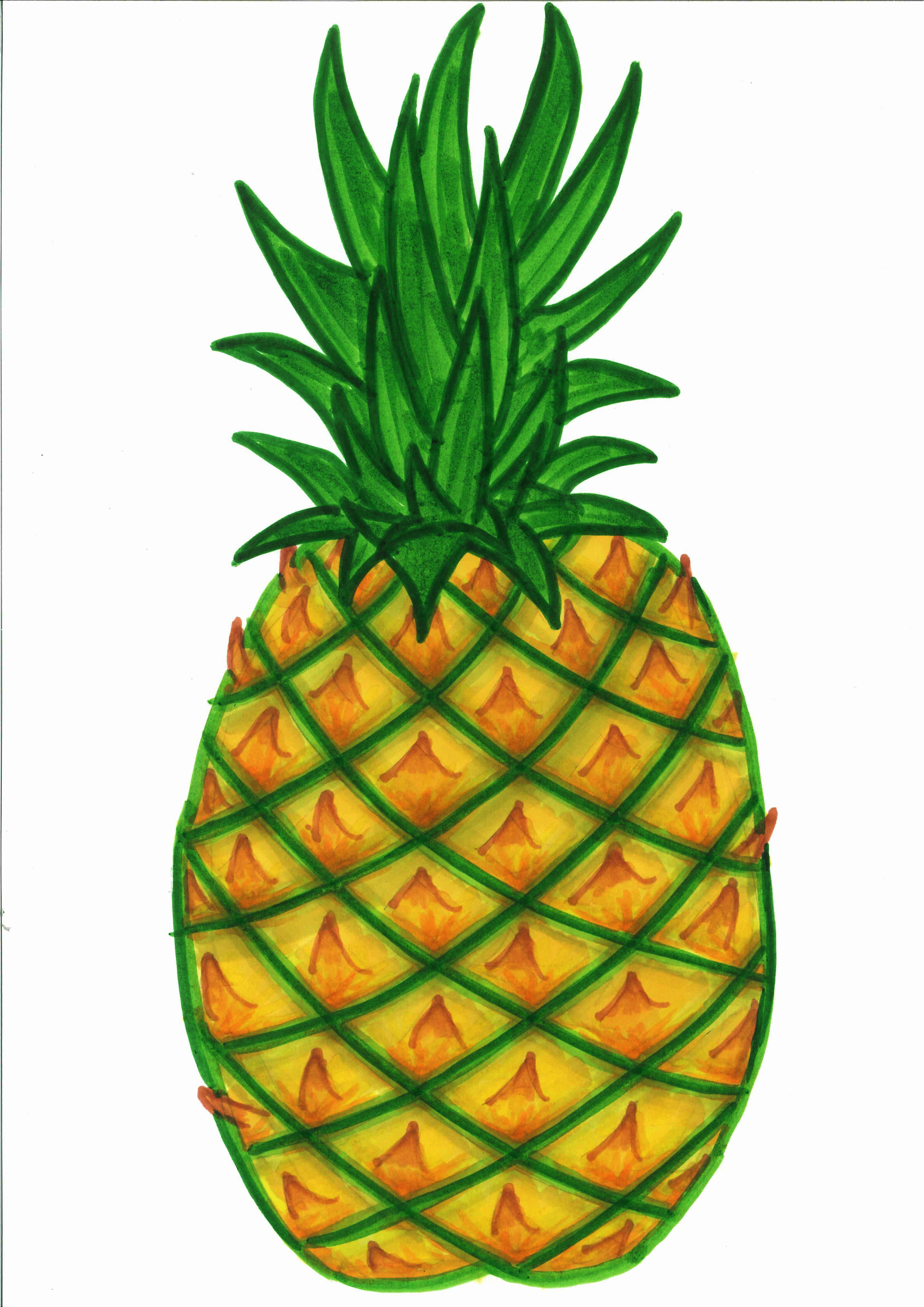 House clipart pineapple. Great drawing clip