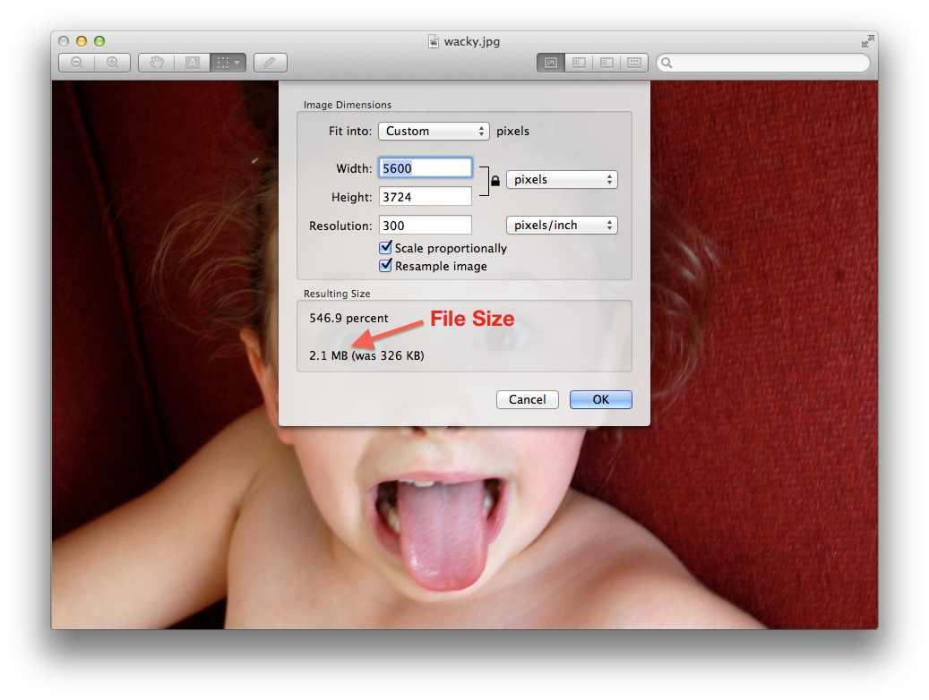 How to shrink image to fit png. Crop resize photos for